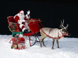 Dünya Kadar Noel Geyiği